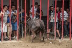Altura-desafio-Jaime-Tarrega-y-El-Salinero-21