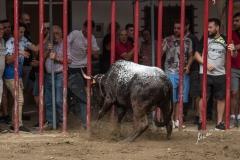 Altura-desafio-Jaime-Tarrega-y-El-Salinero-23