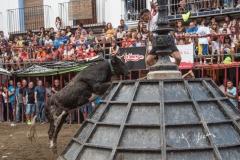 Altura-desafio-Jaime-Tarrega-y-El-Salinero-38