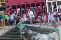 madroñiz (4)